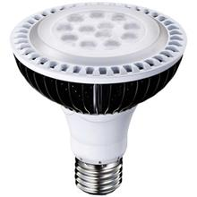 ADATA PAR30 12W LED Lamp